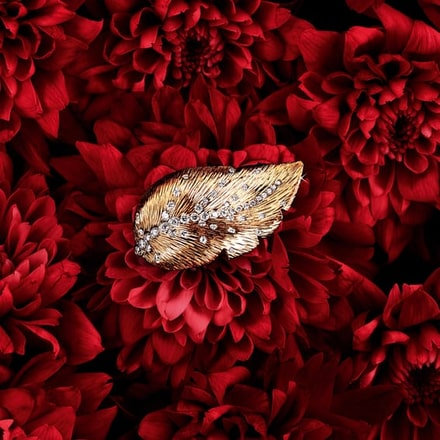 Extremely Piaget woman rose gold diamond ring