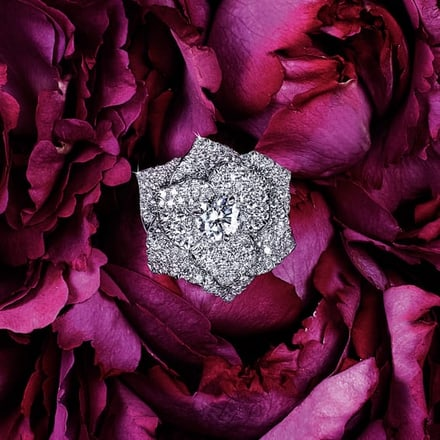 Piaget Rose ring in white gold with diamonds