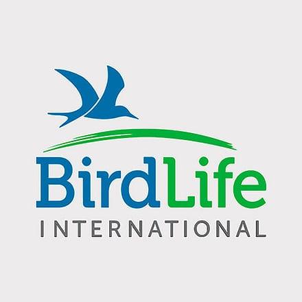 bird life international