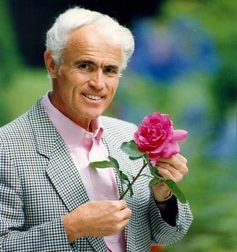 Ив Пьяже и 30-летний юбилей его розы