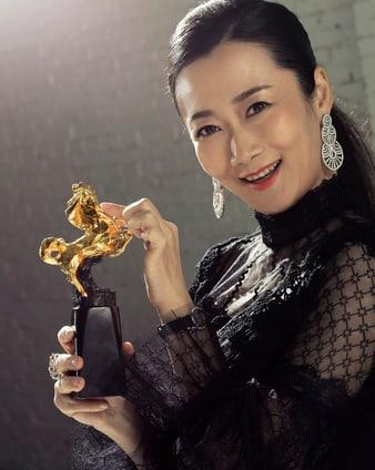 趙濤:入圍2018年金馬獎