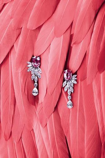 G38M8700 Sunny Side of Life鑽石和粉紅色藍寶石耳環