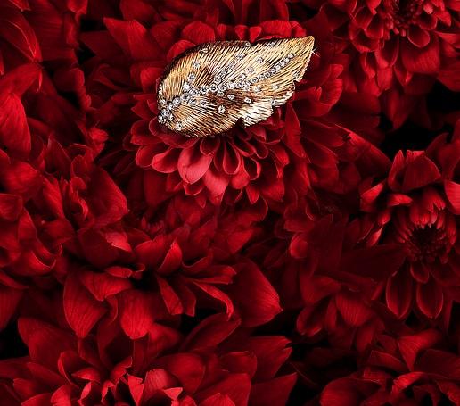 Damen-Diamantring Extremely Piaget aus Roségold