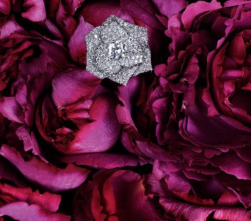 Ring Piaget Rose aus Weißgold mit Diamanten