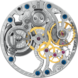 838S skeleton movement